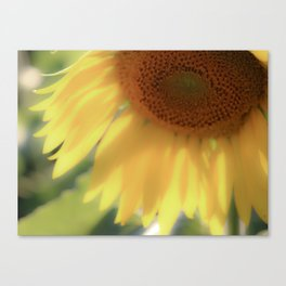 Dreamy Sunflower Yellow Whimsical Summer Photography Canvas Print