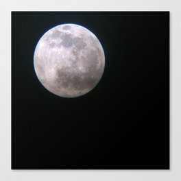 Once in a Full Moon Canvas Print