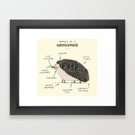 Anatomy of a Hedgehog Framed Art Print