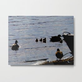 White Cross Bay 5 Metal Print