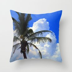 Florida Beauty Throw Pillow