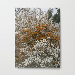 White and Orange Floral Fire Metal Print