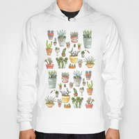 succulents Hoodies featuring Potted Succulents by Brooke Weeber
