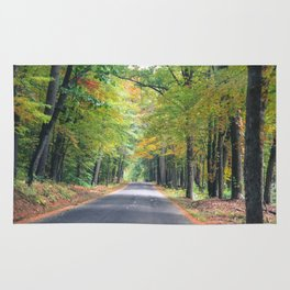 New Beginnings - Fall Colors Rug