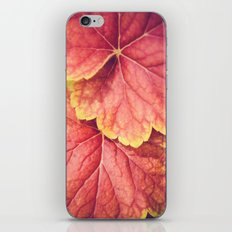 Two Leaves iPhone Skin