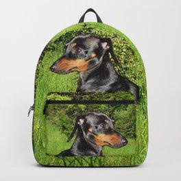 Dog Dachshund Doxie Backpack