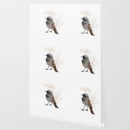 Grumpy Junco Bird Wallpaper