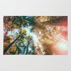 California Redwoods Sun-rays and Sky Rug