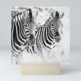 Zebra Pair Mini Art Print