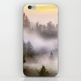 Misty Mount Tamalpais State Park iPhone Skin