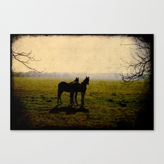 Two Horses Canvas Print