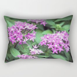 Longwood Gardens Autumn Series 309 Rectangular Pillow