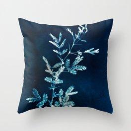 Blue gazes from the cat windows Throw Pillow