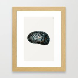 Labirynth Framed Art Print