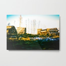 Poltery Site (Wood Storage Area) After Storm Victoria Möhne Forest 2 bright Metal Print