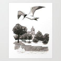 Caspian Tern at Promontory Point Art Print