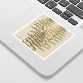 Vintage Fern Botanical Sticker