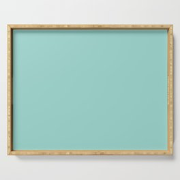 Dark Pastel Aquamarine Blue Green Solid Color  - All Color - Solid Hue - Single Shade Serving Tray