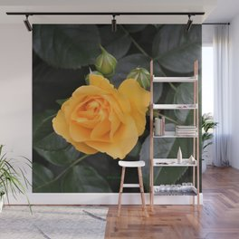 "A Rose Named ""Julia Child"" Wall Mural"
