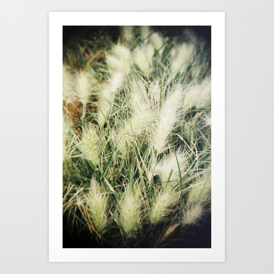 The warmth of earth Art Print