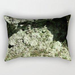 Lichen Rectangular Pillow