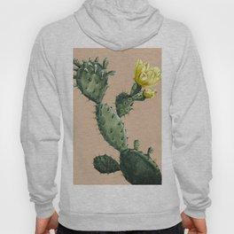 Cactus on Terra Cotta Hoody