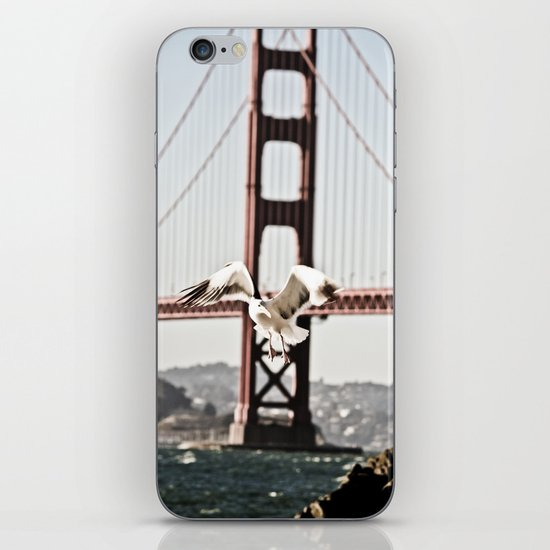 BAY GULLS iPhone & iPod Skin