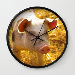 Happy piglet in the straw, country life pure Wall Clock