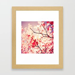 Dialogue With the Sky Framed Art Print