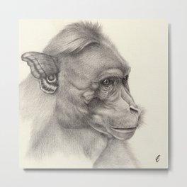 """""""Bloomers"""" series, III (Bonnet macaque) Metal Print"""