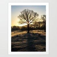 Winter#3 Art Print