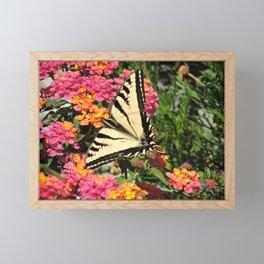 Swallowtail on Lantana Framed Mini Art Print
