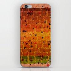 Relaxing Pattern iPhone & iPod Skin