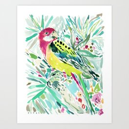 FELLA the Rosella Art Print