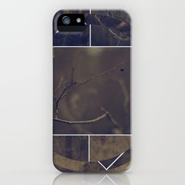 polar ring iPhone Case