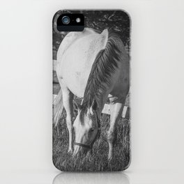 Gray Mare & Foal iPhone Case