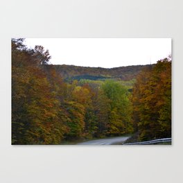 Fall Color Scenic Overlook Canvas Print