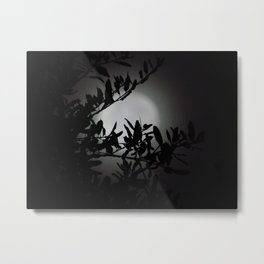 Moonlit Dreams Metal Print