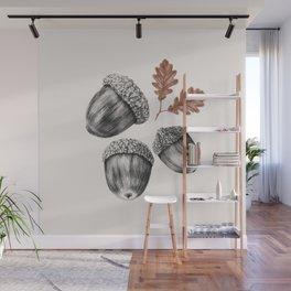 Acorns Wall Mural