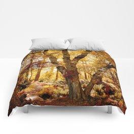 Old tree bridge in Fall Comforters