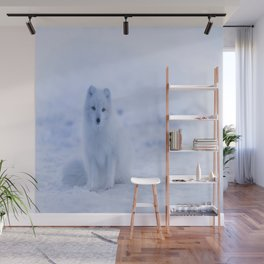 The Arctic Fox in Iceland Wall Mural