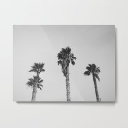 PALM TREES V / Joshua Tree, CA Metal Print