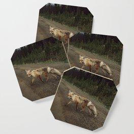 Fox Trot Coaster