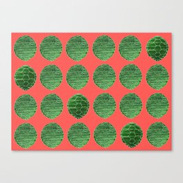 Turtle Shell Coral Canvas Print