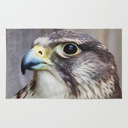 Hawk Photography | Wildlife | Birds Rug