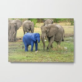 Its a Boy - Blue Baby Elephant Metal Print