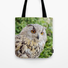 Eagle Owl with glowing eyes Tote Bag