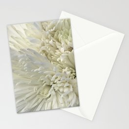 Ivory White Feathery Mums Floral Photo Stationery Cards