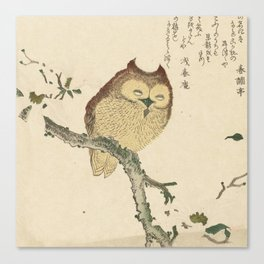 Japanese Woodcut: Owl on a Magnolia Branch Canvas Print