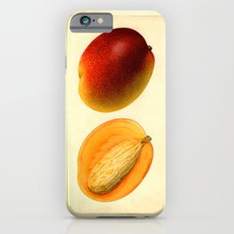 Vintage Botanical Mango iPhone Case